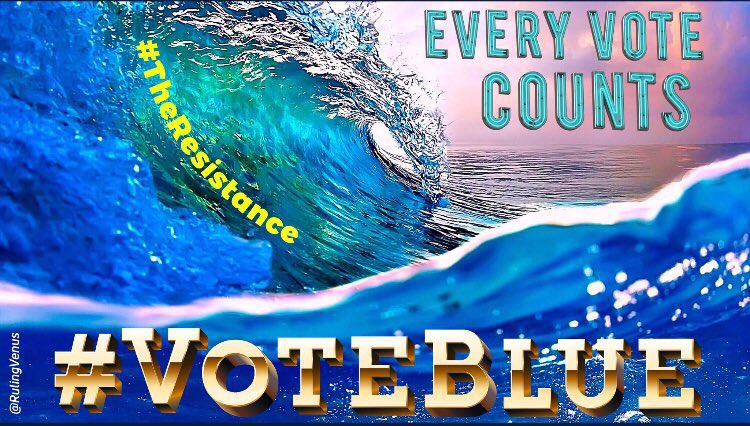 #TheResistance fights back; we #VoteBlue!